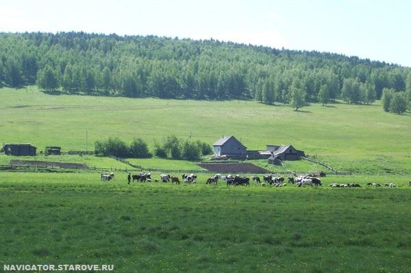 NAVIGATOR.STAROVE.RU_Russkaya_Tavra_1743