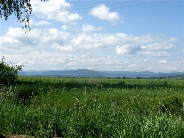 Вид с Липован на Буковинские Карпаты: