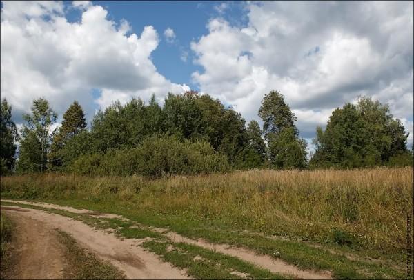 Сейчас скит выглядит вот так. Да, небольшой лесок в огромном поле.